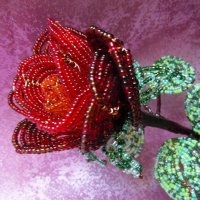 Моя роза для вас. :: nadyasilyuk Вознюк