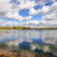 Осень в Красноярске :: Олег Мартоник