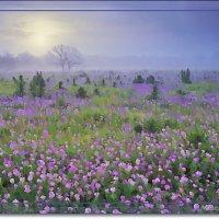 Туман стелится по земле :: Лидия (naum.lidiya)