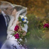 свадебный поцедуй :: Наталья-Белка Абдрахманова