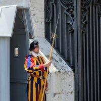 Андрей Никитин - Я охраняю Ватикан