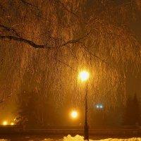 Ночные огни :: Виктор Четошников