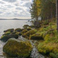 Каменистый берег :: vladimir