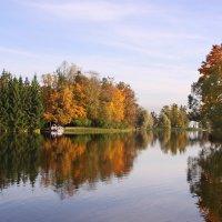 Золотая осень :: Наталья