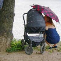 Весенний дождь :: Виктор Никитенко