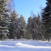 Зима в прибайкалье :: Валентин Когун