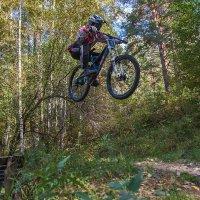Велоспорт :: Владимир Габов