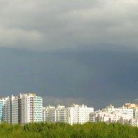 Санкт-Петербург. Юго-Запад. :: Владимир Гилясев