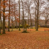 Осень в парке... :: Waldemar .