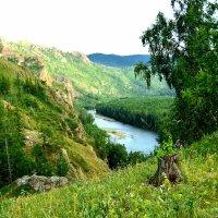 вид на реку Белый Июс :: Анатолий Смольников