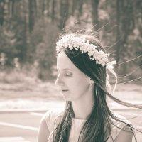 нежный ветер... :: Анна Семений