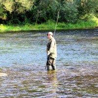 Рыбалка с комфортом. :: Борис Митрохин