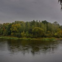 Дождливый  день.  На  Березине. :: Валера39 Василевский.