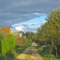 осенняя улица в деревне :: Елена