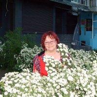 Весна, цветы, мудрость :: Галина Дашевская