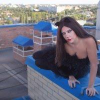 живущие на крышах... кошки ) :: Райская птица Бородина