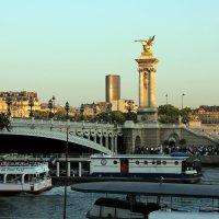 мост Александра  III :: Ольга