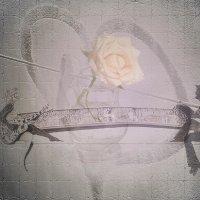 «Тебя любовью заколдую ... я смогу ...» :: vitalsi Зайцев