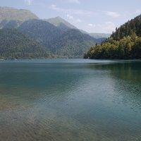 Озеро Рица :: Sergey Apinis