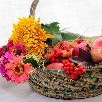 Плоды осени :: Ксения Базарова
