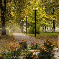 В парке :: Veyla Vulpes