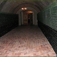 Подземный тоннель с шампанским :: Вера