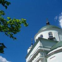 Введенская церковь, что на погосте Черная грязь :: Grey Bishop