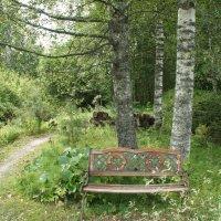 Окраина парка скульптур Периккалы :: Елена Павлова (Смолова)
