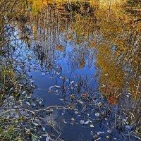 В зеркале осень! :: Любовь Чунарёва