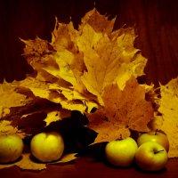 Осенний :: Elena Ignatova