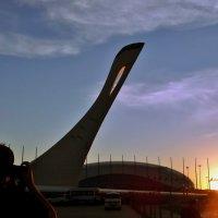 В Олимпийском парке... :: СветЛана D