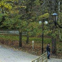 Осеннее... :: ФотоЛюбка *