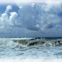 Волнуется море. :: Чария Зоя