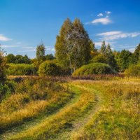 Осень :: Андрей Дворников
