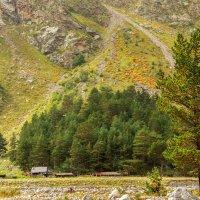 все познется в сравнении :домик в горах :: Svetlana AS