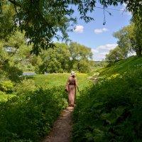 Красивое лето Тарусы :: Светлана Гибазова