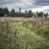 Осень... :: Игорь Иванов