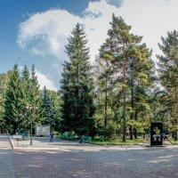 Центральный парк культуры и отдыха :: Женечка Зяленая