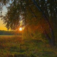 Вот и осень :: Igor Yakovlev