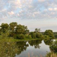 Протва - красивая река. :: Сергей Бурлакин