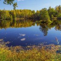 Что такое осень 2 :: Андрей Дворников