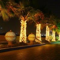 ночной Дубай :: оля казанина