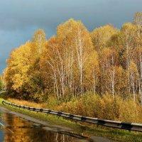 Мокрая дорога :: Дмитрий Конев