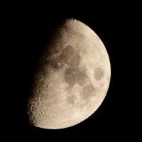 moon :: JANIS Klavins