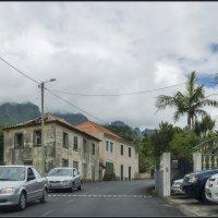Madeira with love. :: Jossif Braschinsky