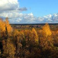 Сентябрьский пейзаж в окрестностях Усть-Выми :: Николай Туркин