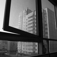 Вертикали :: Анастасия Акатьева