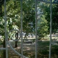 Где-то царит золотая осень, а у меня за окном зеленым-зелено... :: Нина Корешкова