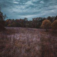 Осенние потёмки :: Андрей Куприянов