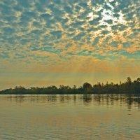 Осеннее утро. :: Роберт Хак.....